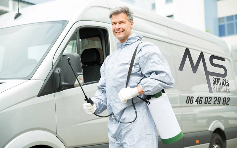 MS SERVICES - Forfait professionnel anti nuisibles à partir de 49€ HT* - Dératisation bureaux - Dératisation commerces - Dératisation collectivités - 24H/24 - 7J/7 - 06 46 02 29 82
