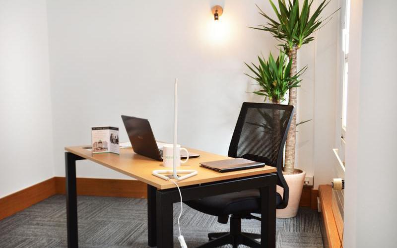 MS SERVICES - Forfait professionnel anti nuisibles à partir de 79€ HT* - Dératisation bureaux - Dératisation caves - Dératisation hôtels - Dératisation immeubles - 24H/24 - 7J/7 - 06 46 02 29 82